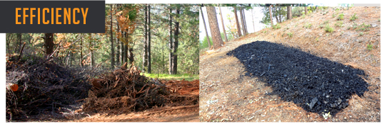 Working with PurFire is an efficient way to quickly process slash and debris into ash.